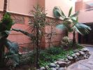 Location Appartement Marrakech Gueliz 56 m2 2 pieces