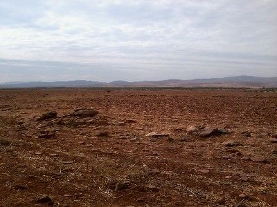 photo annonce For sale Land  Marrakech Morrocco